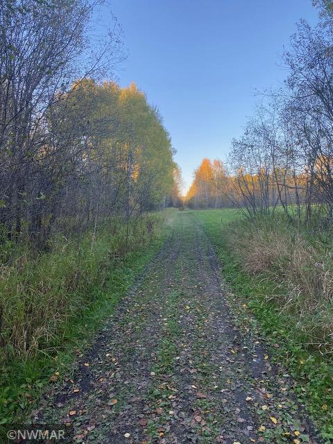 29615 Alvwood Road Property Photo