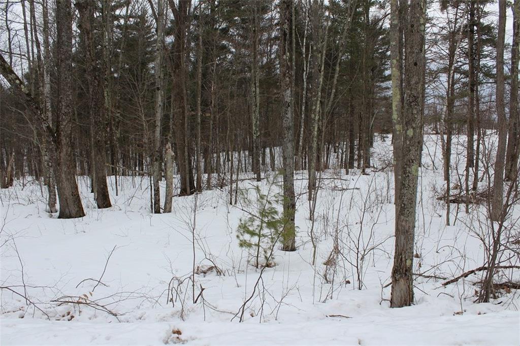 Lot 2 Hidden Woods Dr Property Photo