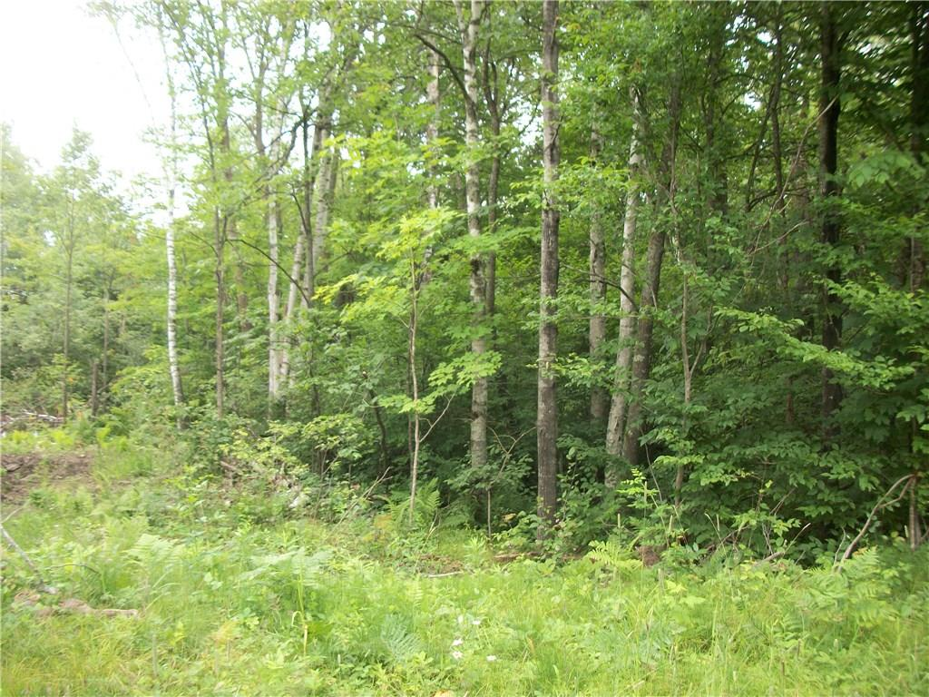 Lot 103 Arcadia Place/30th Ave Avenue Property Photo