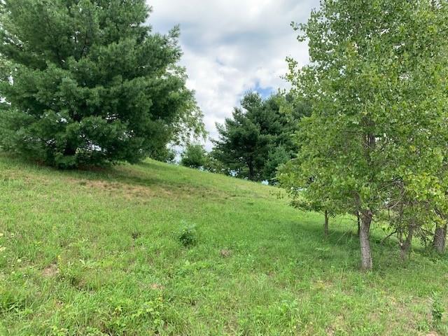 Lot 88 Van Buren Street Property Photo 2