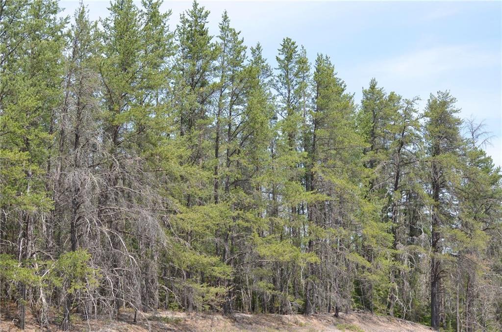 Near Misty Bog Road Property Photo