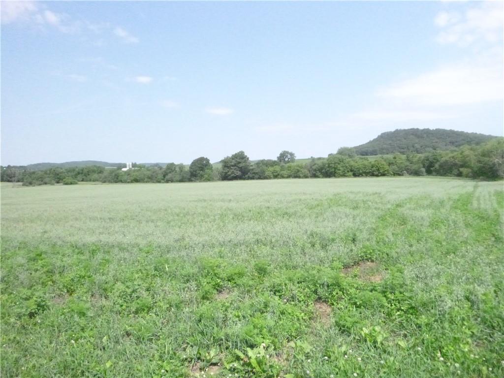 N9958 N Branch Road Property Photo 24