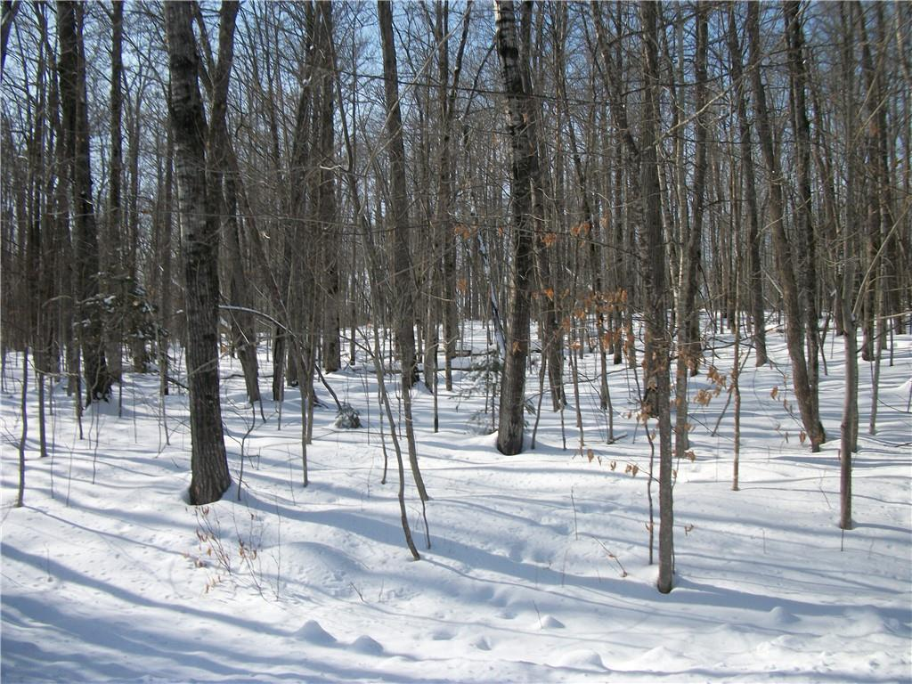 Birch Subdividion Of The Woods Real Estate Listings Main Image