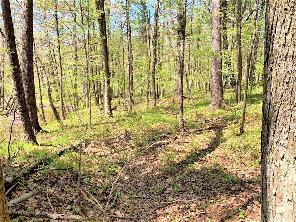 0 Lot 1 Dunlap Road Property Photo 33