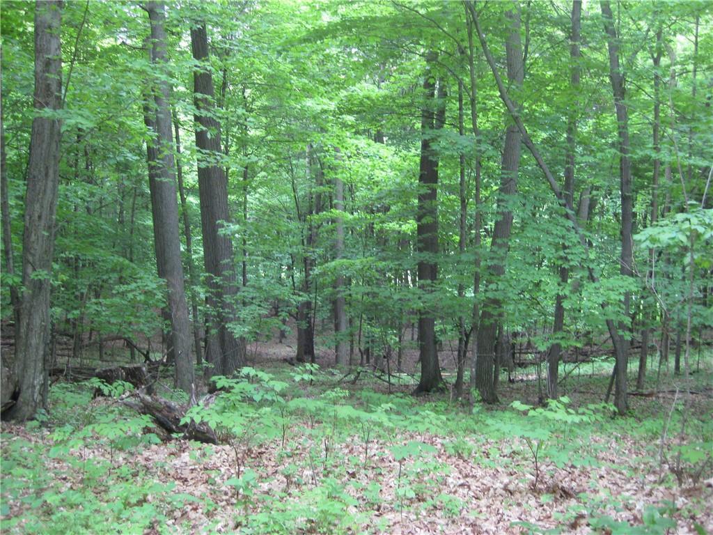 E3842 County Road D Property Photo 9