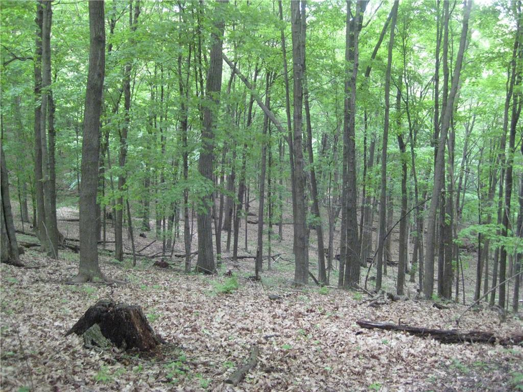 E3842 County Road D Property Photo 12