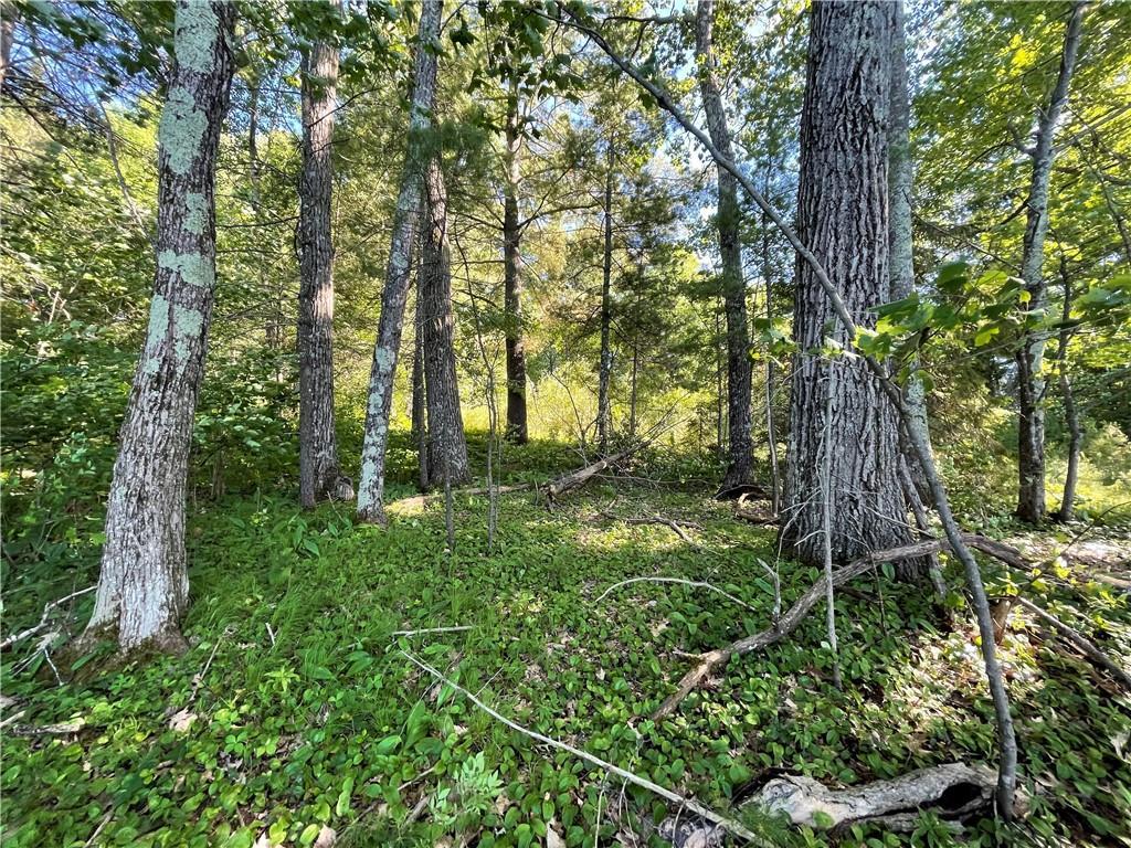 12448 W County Hwy B Property Photo 4
