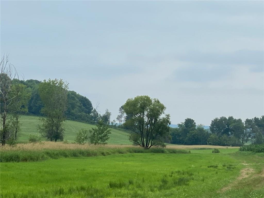 0 Oak Knoll Road Property Photo 6
