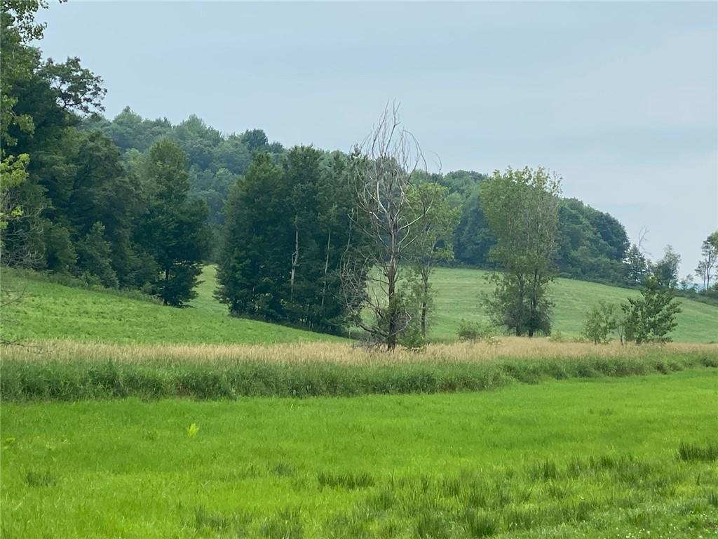 0 Oak Knoll Road Property Photo 7