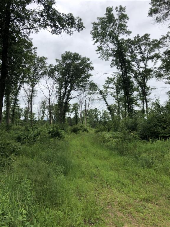 E28304 Pond Road Property Photo 3