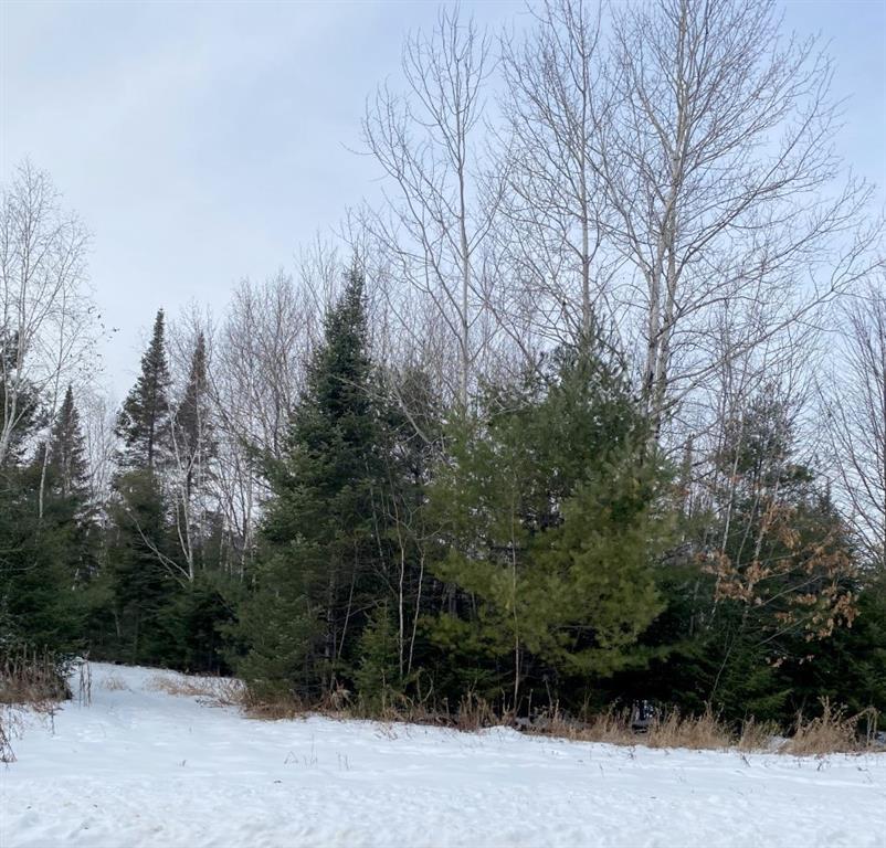 0 Long Lake Road Property Photo