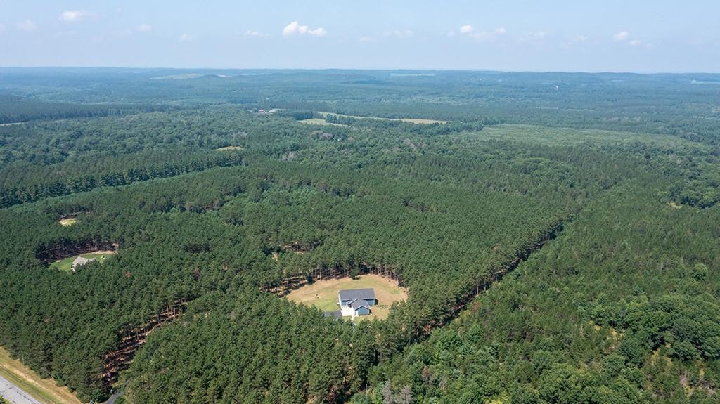 E10520 Pine Road Property Photo 8