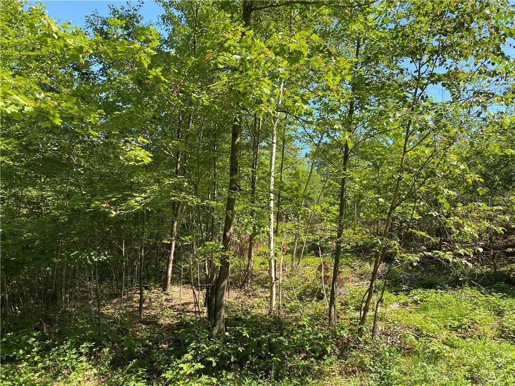 Lot 1 Of Csm 4755 954th Street Property Photo
