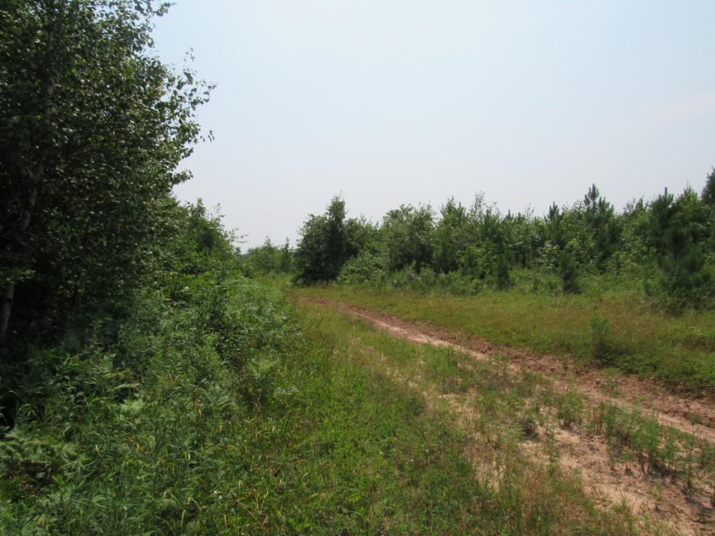 1a On Channey Road Property Photo 22