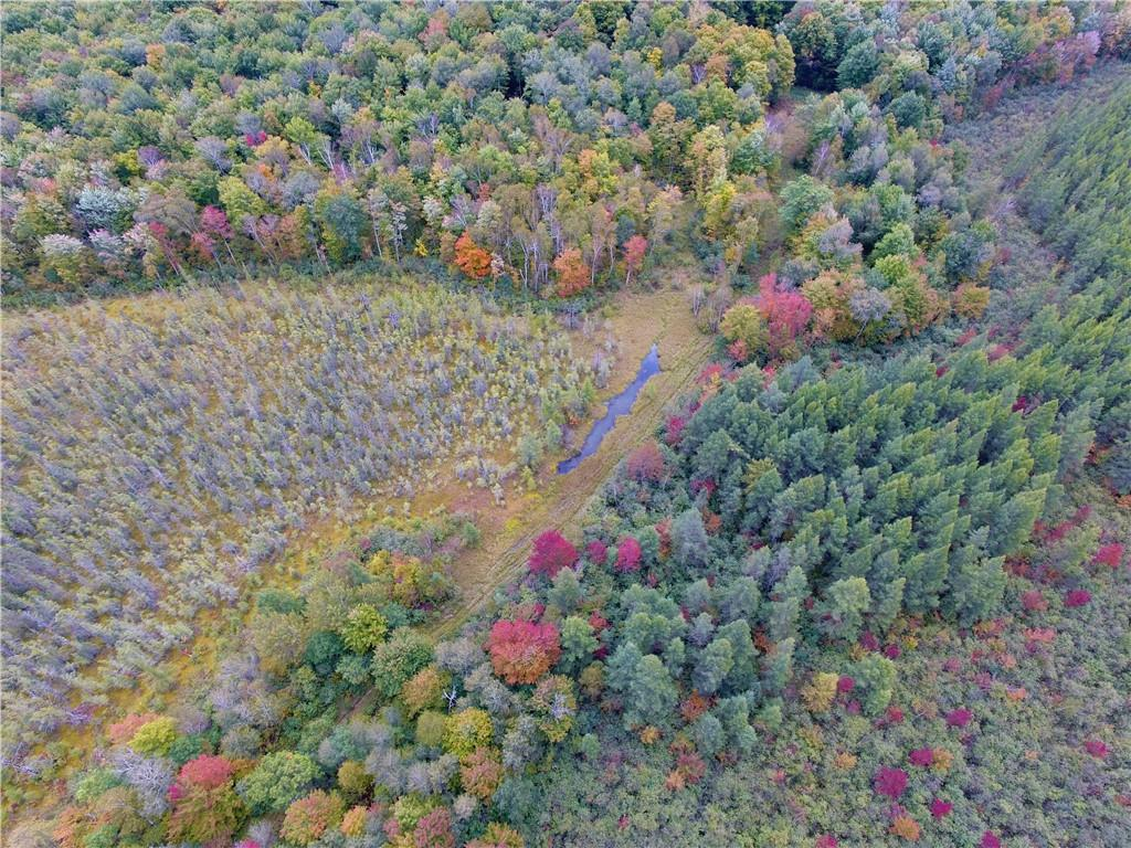 0 Nail Creek Road Property Photo 9