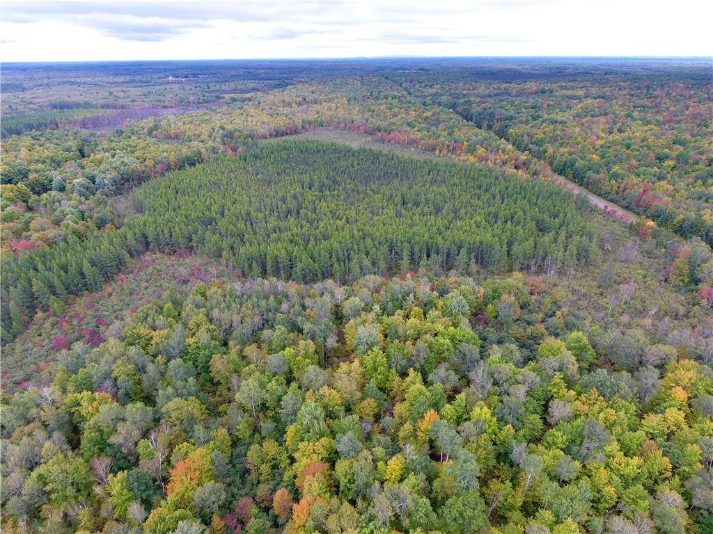 0 Nail Creek Road Property Photo 36