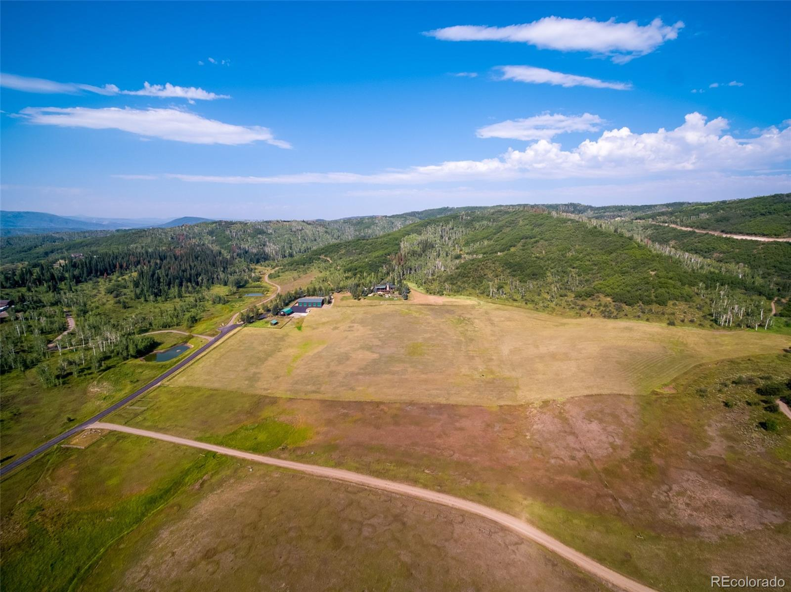 29855 Emerald Meadows Drive Property Photo 3