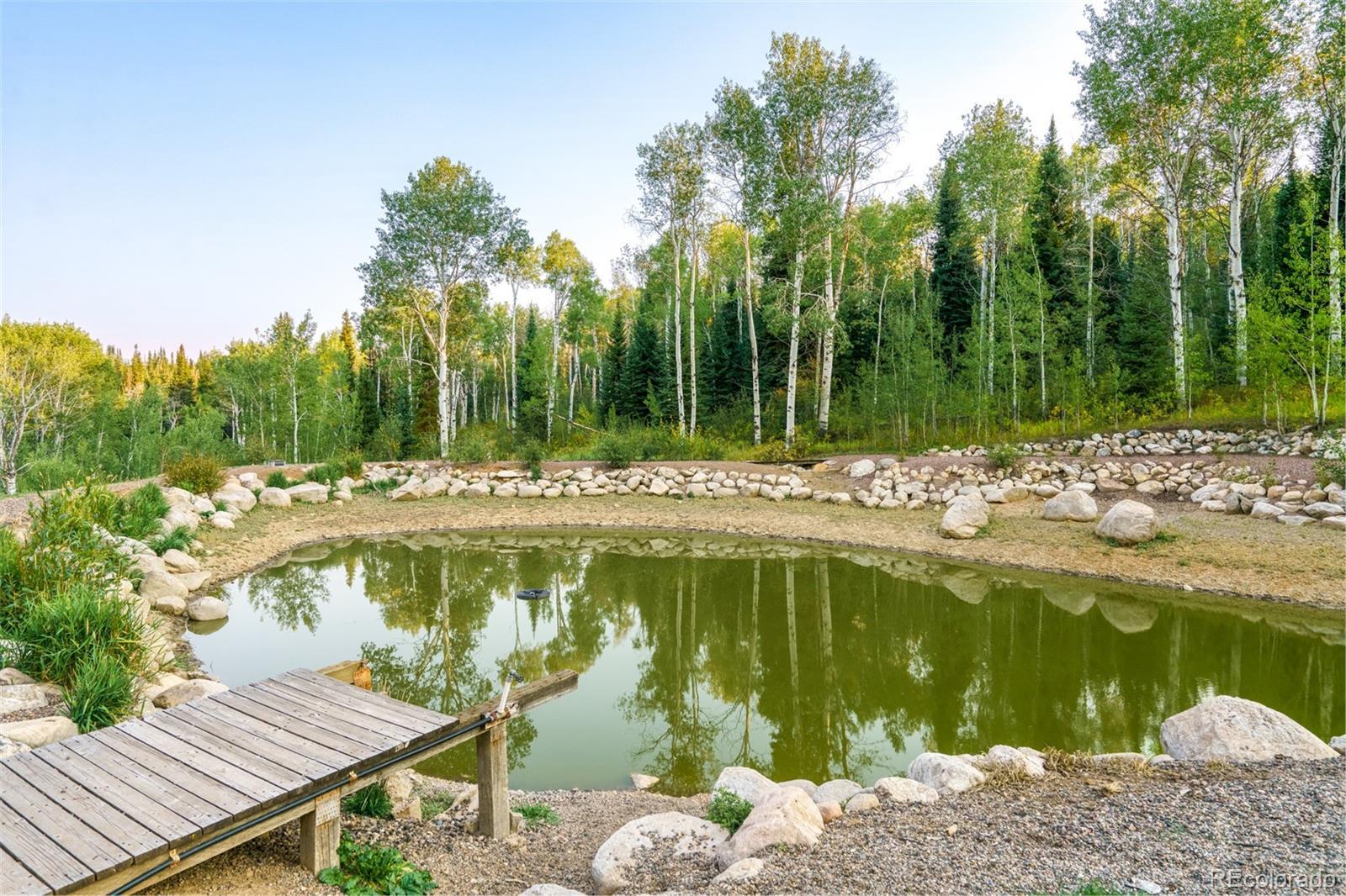 29855 Emerald Meadows Drive Property Photo 37