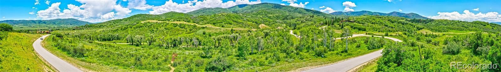 33655 Bald Eagle Drive Property Photo 10