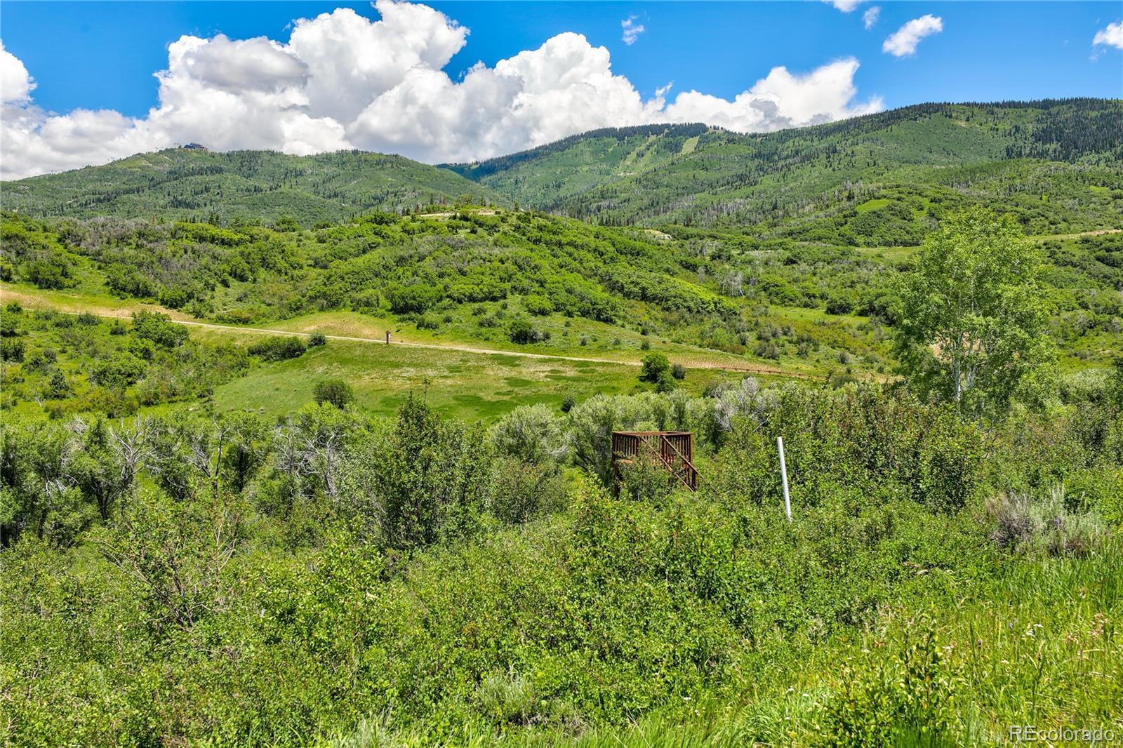 33655 Bald Eagle Drive Property Photo 12