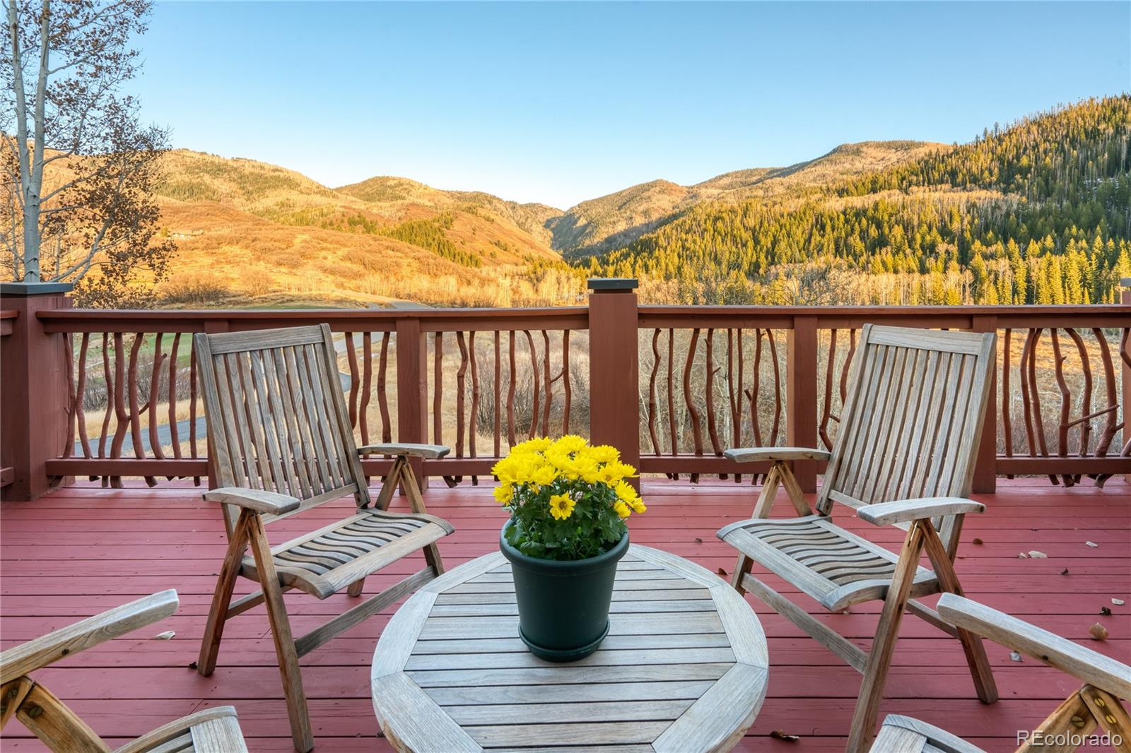 33855 Canyon Court Property Photo 8