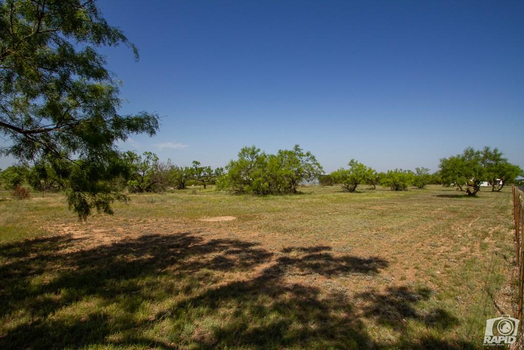 11046 Twin Lakes Lane Property Photo 72