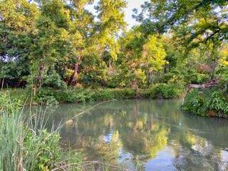 2897 Pardue Rd Property Photo 12