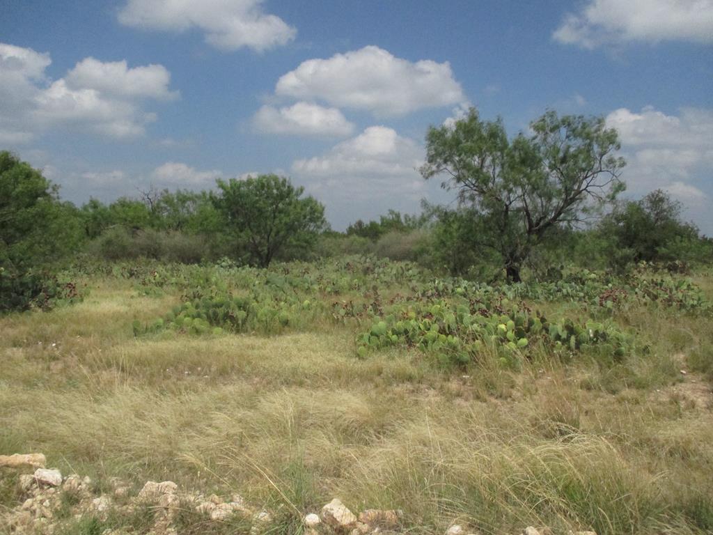 12012 Choctaw Ridge Property Photo