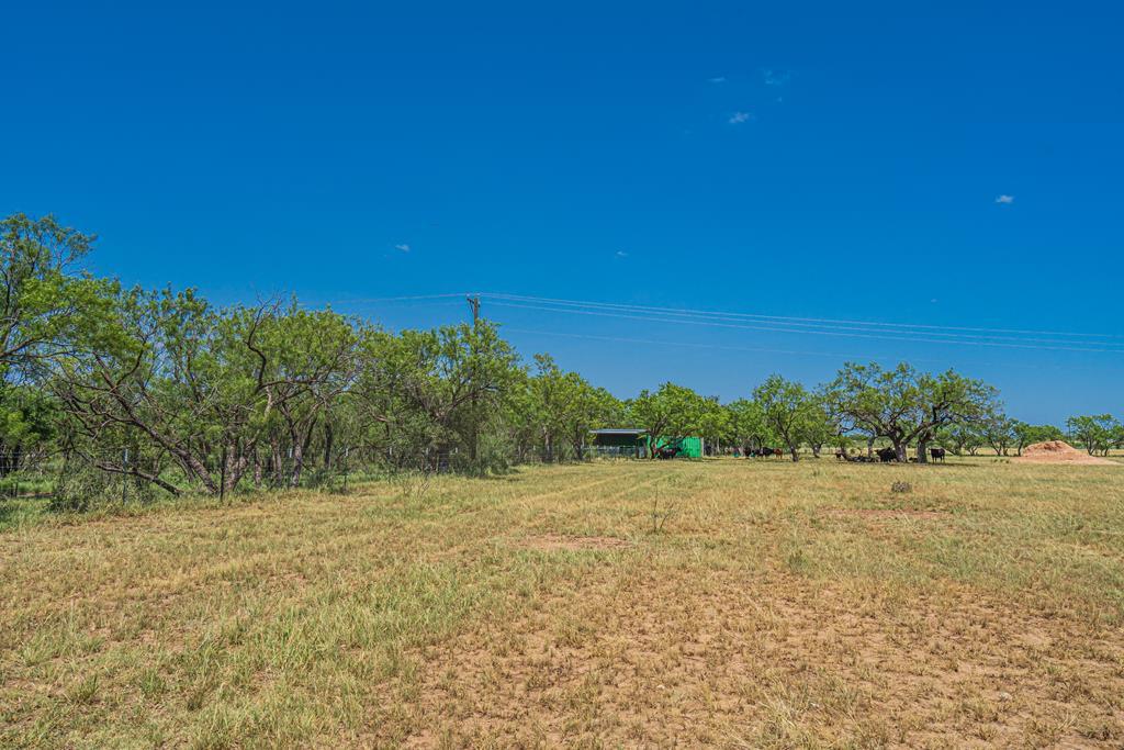 6846 Fm 380 Property Photo 46