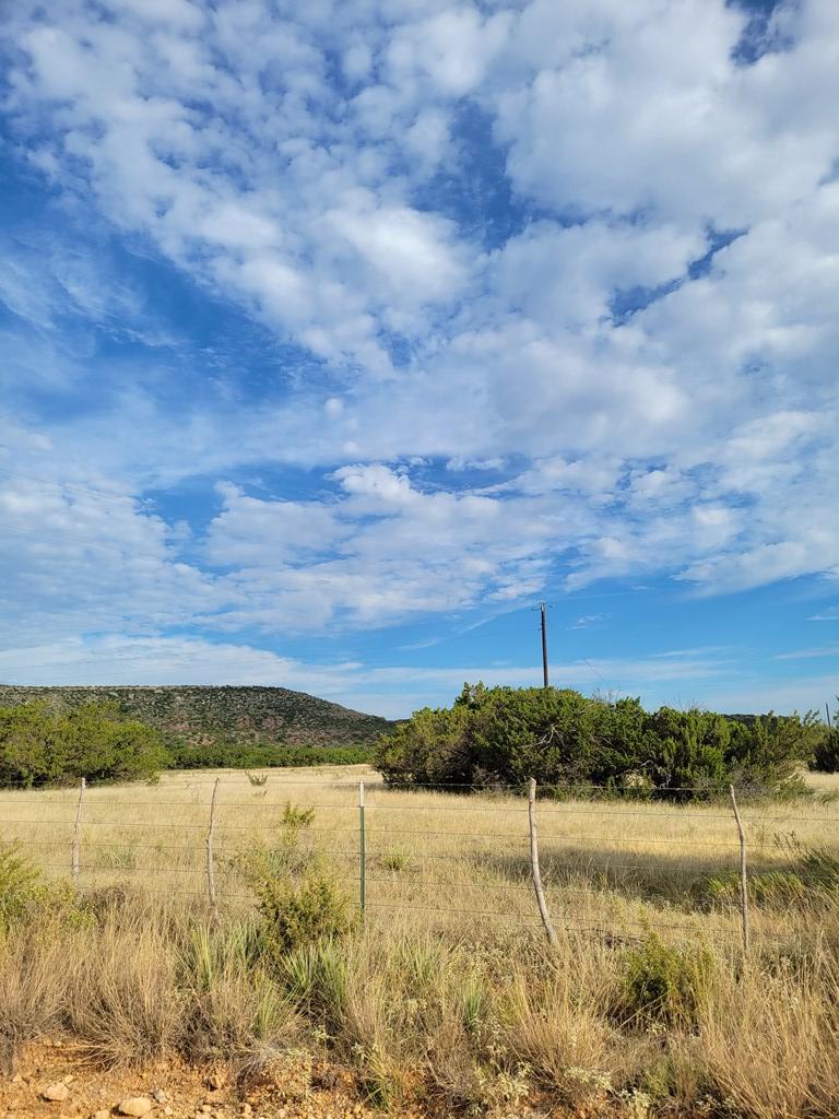 1734 Mule Creek Rd Property Photo 26
