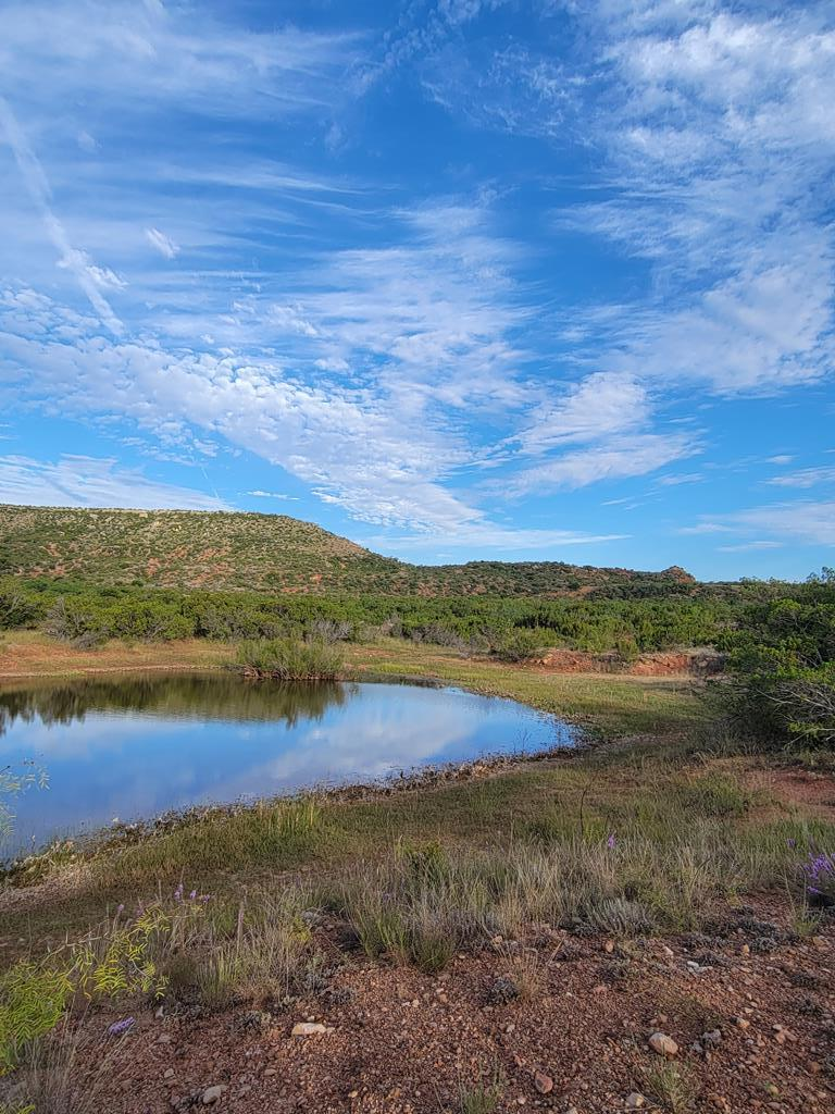 1734 Mule Creek Rd Property Photo 31