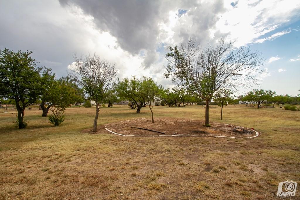 503 Black Bear Lane Property Photo 16