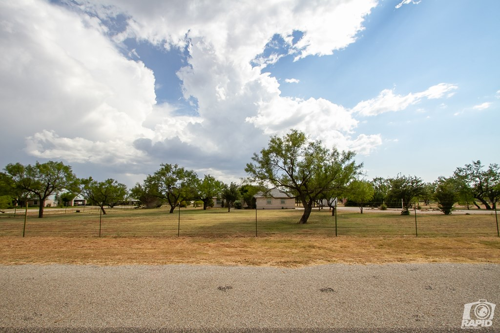 503 Black Bear Lane Property Photo 22