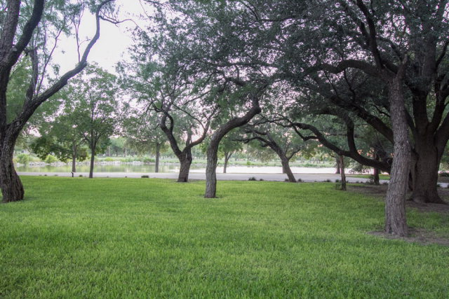 1590 S Concho Dr Property Photo 22