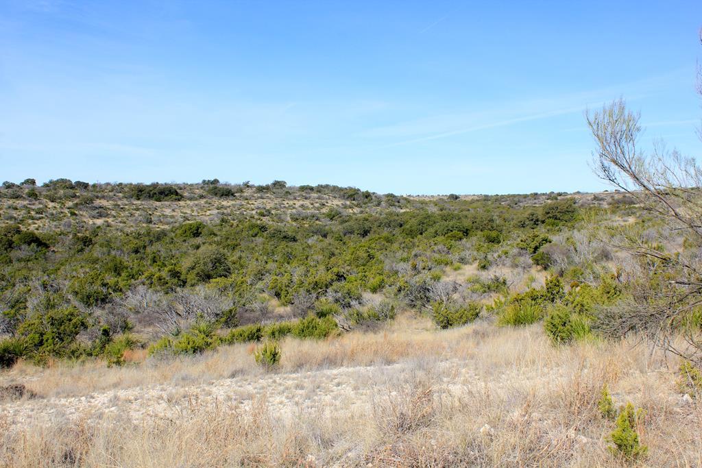 105 Shepherds Trail Property Photo