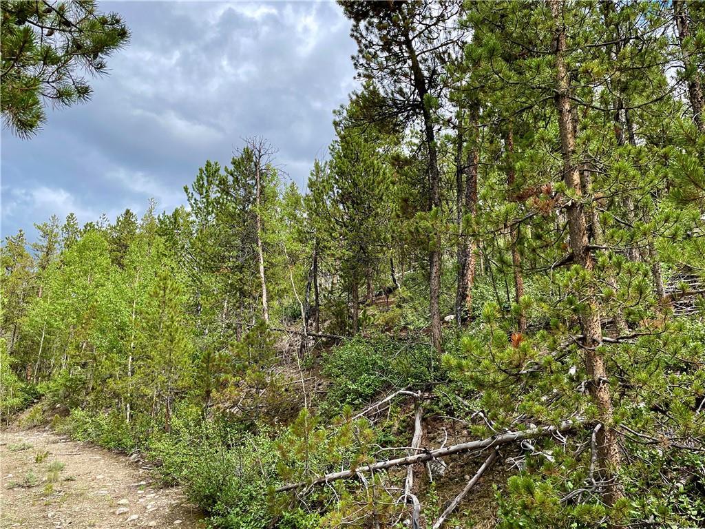 10 Mt Elbert Drive Property Photo