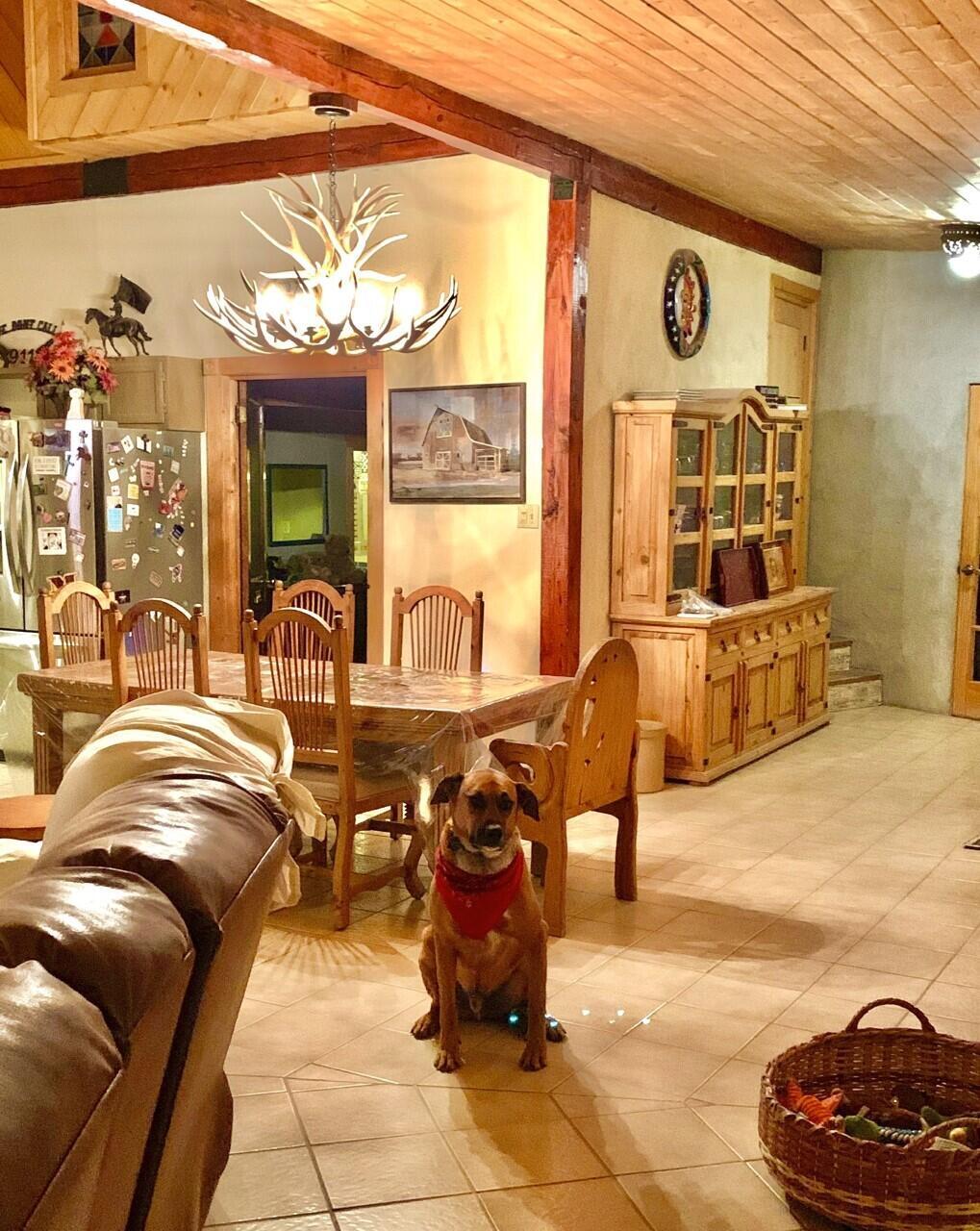Lemitar Ranch & Farm Property Photo 43