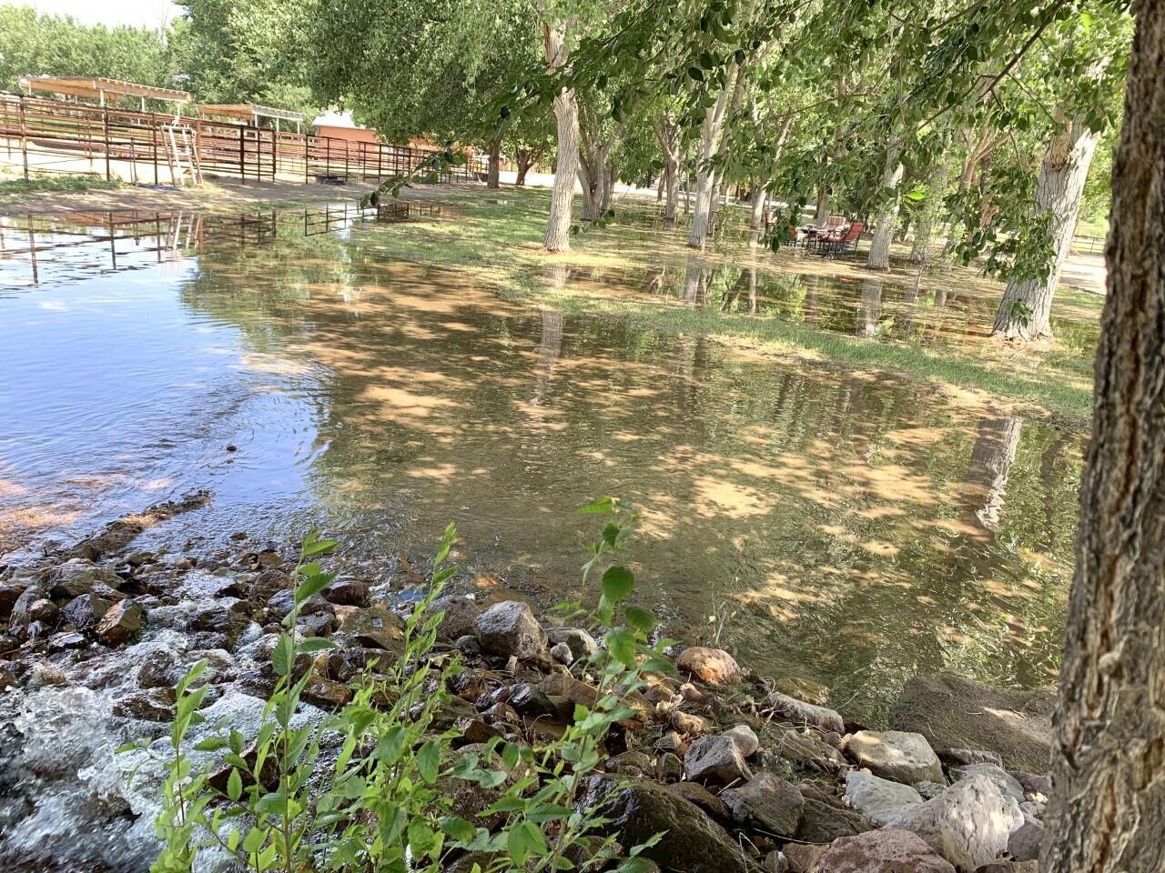 Lemitar Ranch & Farm Property Photo 54