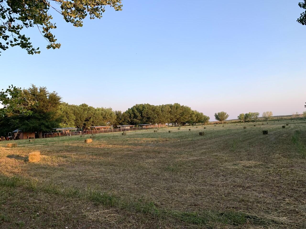 Lemitar Ranch & Farm Property Photo 62