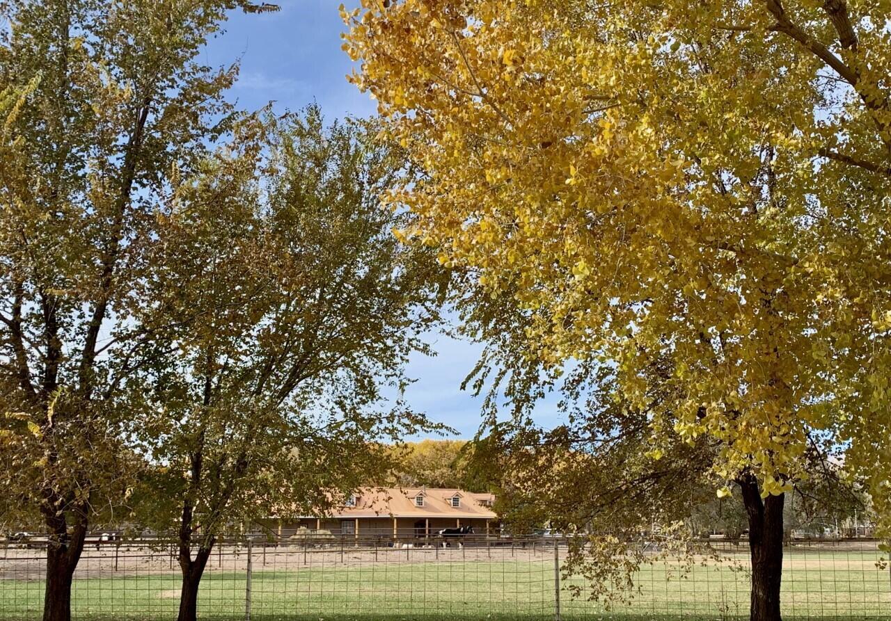 Lemitar Ranch & Farm Property Photo 69