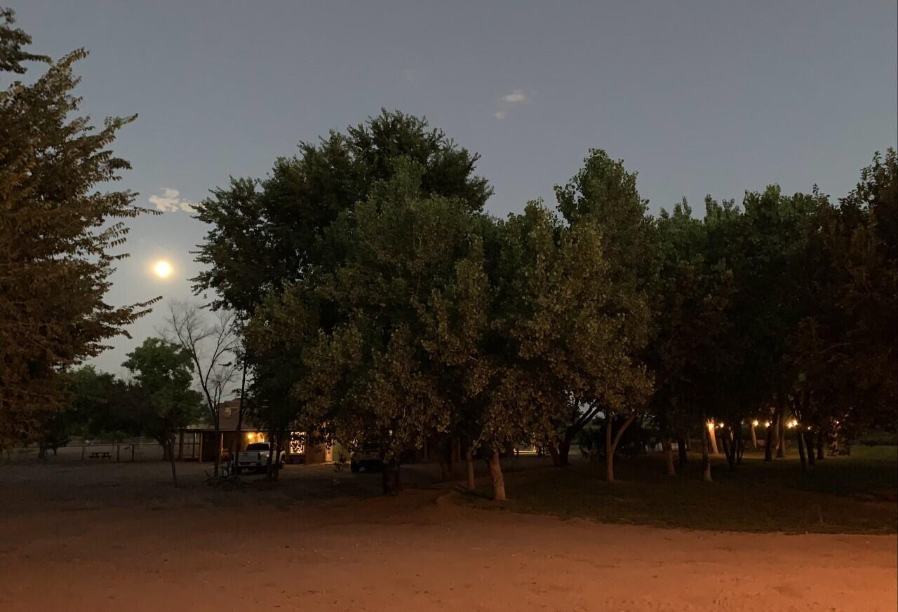 Lemitar Ranch & Farm Property Photo 74