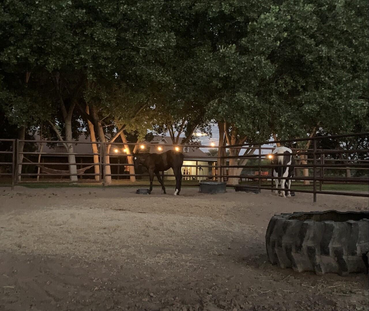 Lemitar Ranch & Farm Property Photo 75