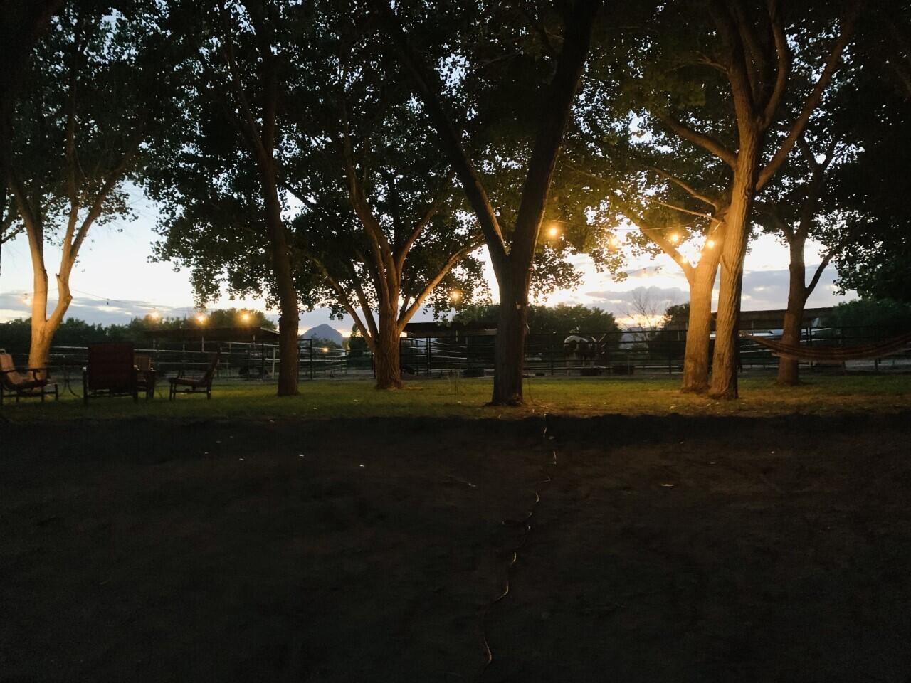 Lemitar Ranch & Farm Property Photo 76
