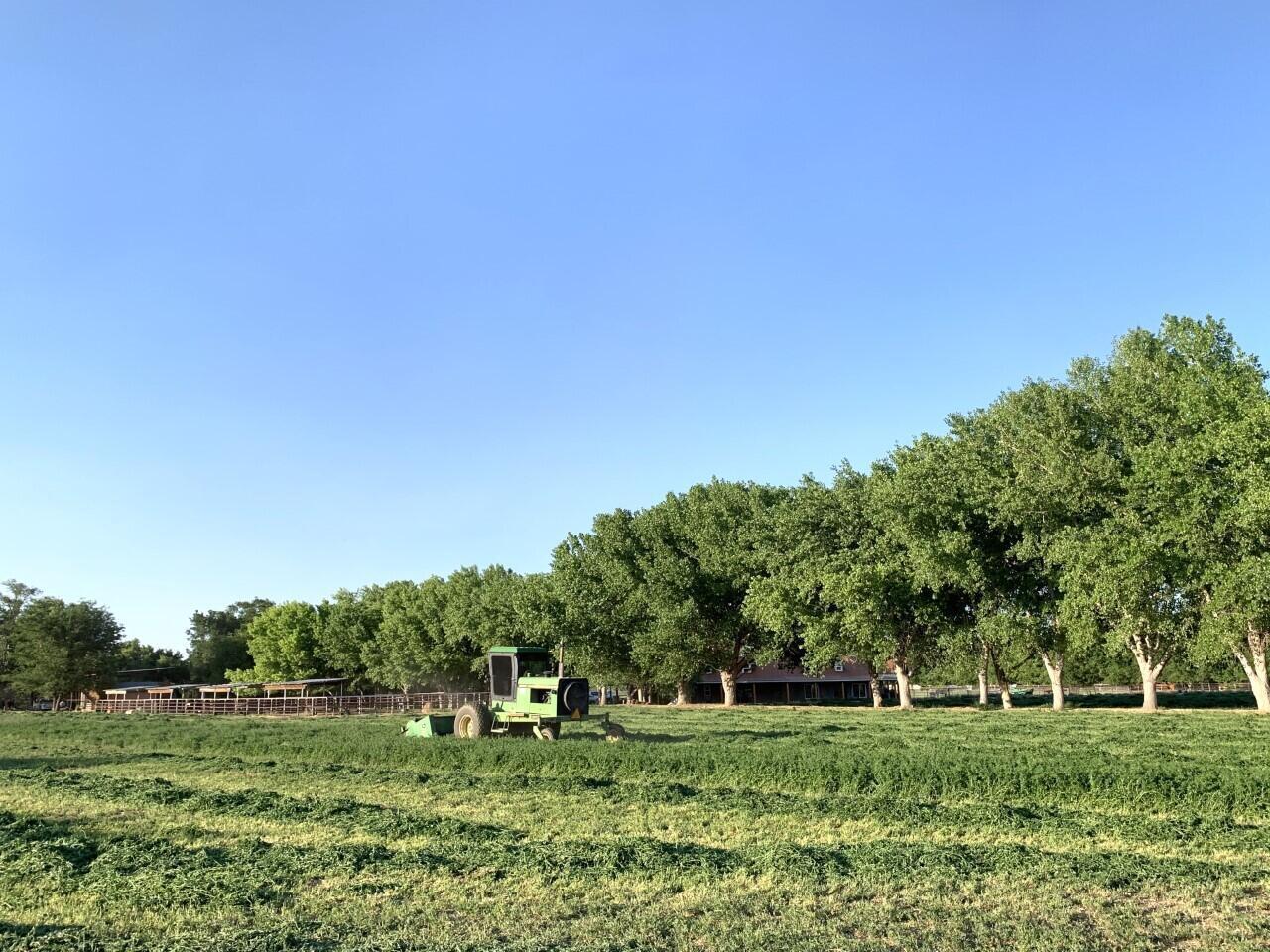 Lemitar Ranch & Farm Property Photo 93