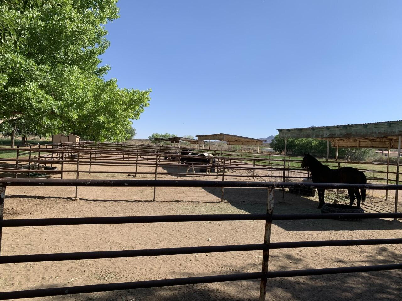Lemitar Ranch & Farm Property Photo 94