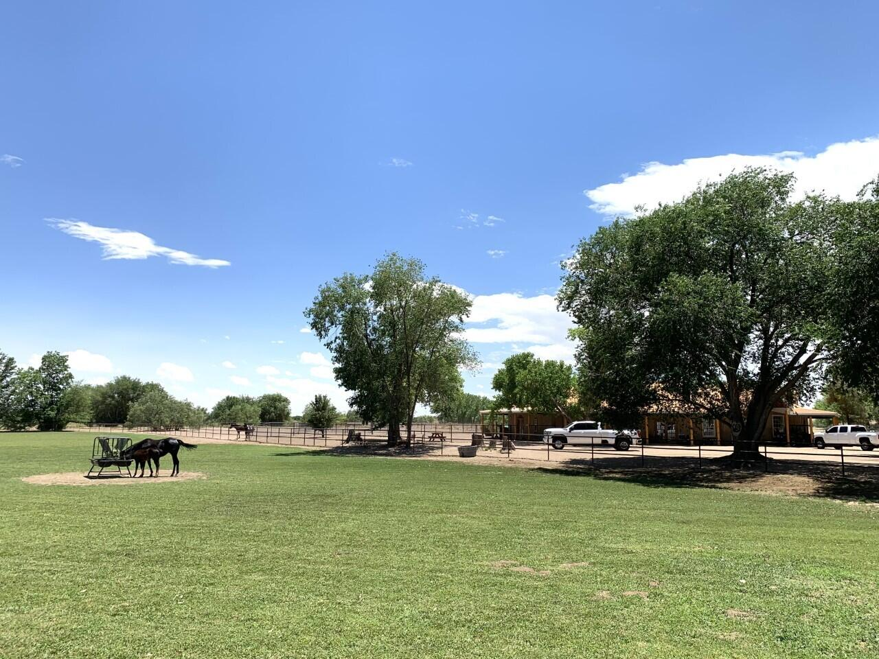 Lemitar Ranch & Farm Property Photo 101