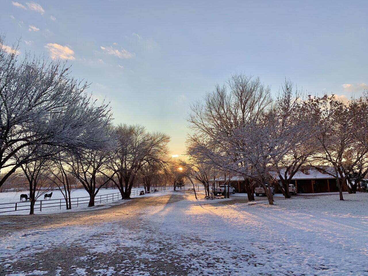 Lemitar Ranch & Farm Property Photo 113