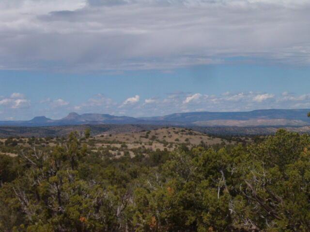 45 Camino Del Sueno Property Photo