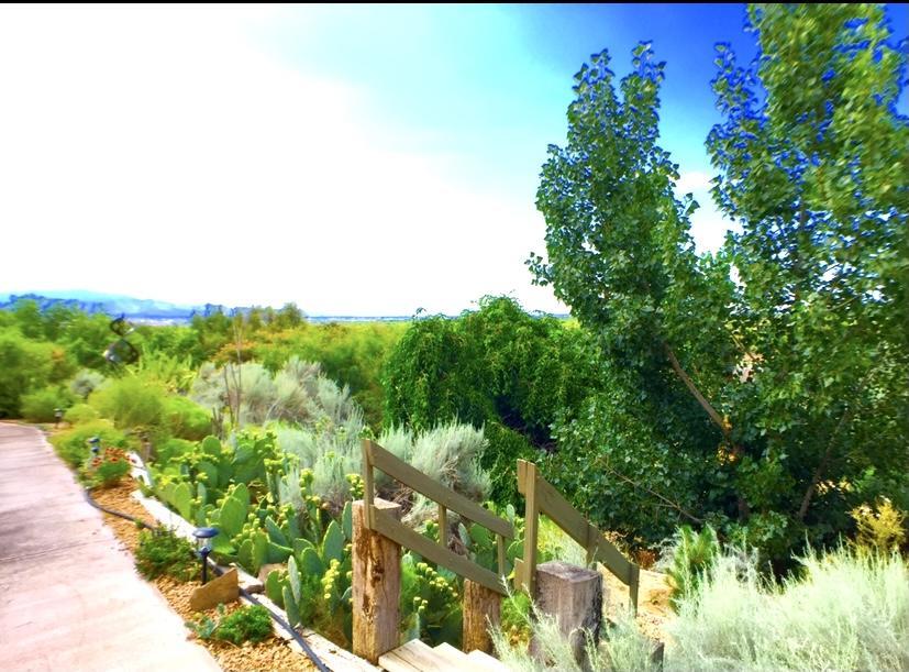 160 Paseo De Corrales Property Photo 11