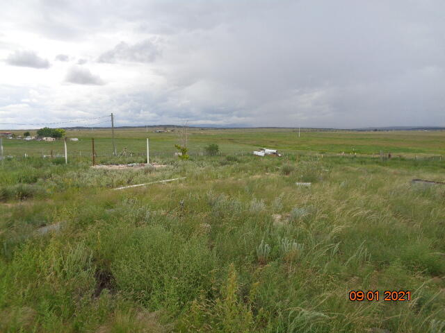 Lands Of Phoenix Real Estate Listings Main Image